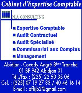 na.consulting